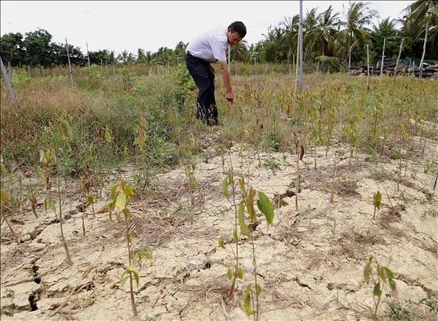Des pluies inesperees dans plusieurs provinces du delta du Mekong et du Centre hinh anh 1