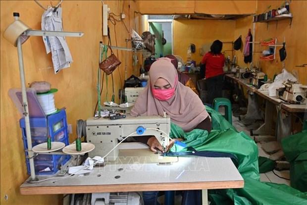 L'Asie du Sud-Est poursuit le combat contre la pandemie de COVID-19 hinh anh 1
