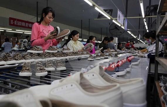 Soixante importateurs americains des chaussures sondent le marche vietnamien hinh anh 1