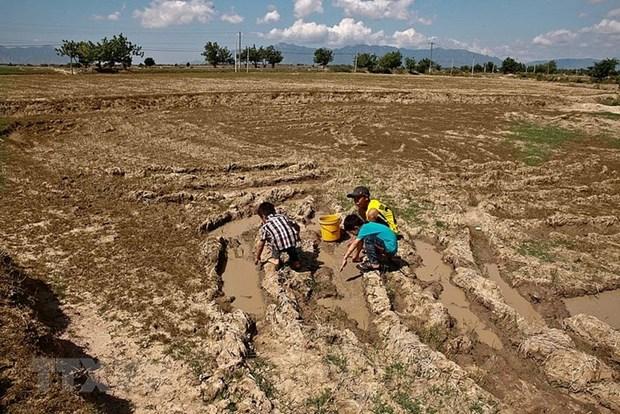 La Banque mondiale assiste le Vietnam dans la resilence au changement climatique hinh anh 1