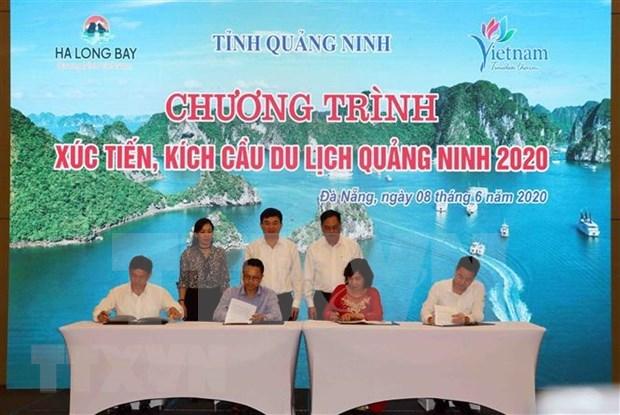 Alliance dans la stimulation du tourisme interieur Quang Ninh-Da Nang hinh anh 1