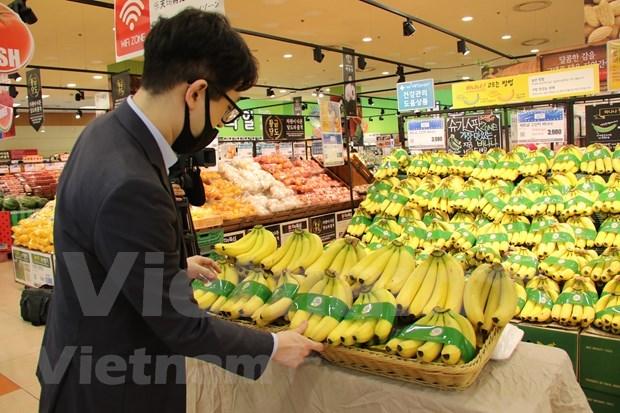 Des bananes vietnamiennes dans les rayons de la chaine de supermarches sud-coreenne Lotte Mart hinh anh 1