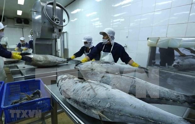 Le commerce vietnamo-israelien atteint 649,4 M de dollars en cinq mois hinh anh 1
