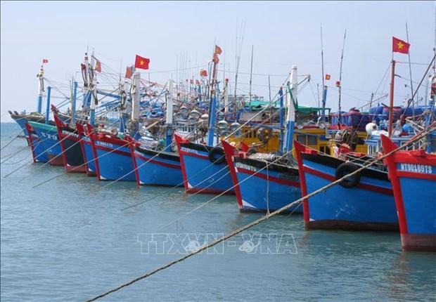 Le Vietnam fait des efforts pour empecher la peche INN, selon le site web Foreign Affair Asia hinh anh 1
