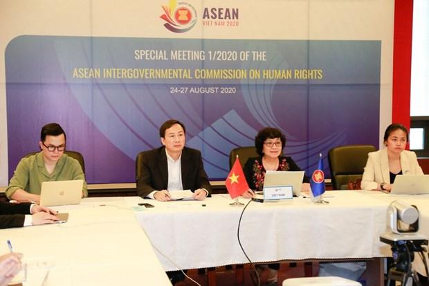 ASEAN : une visioconference speciale de l'AICHR sur les droits de l'homme hinh anh 1