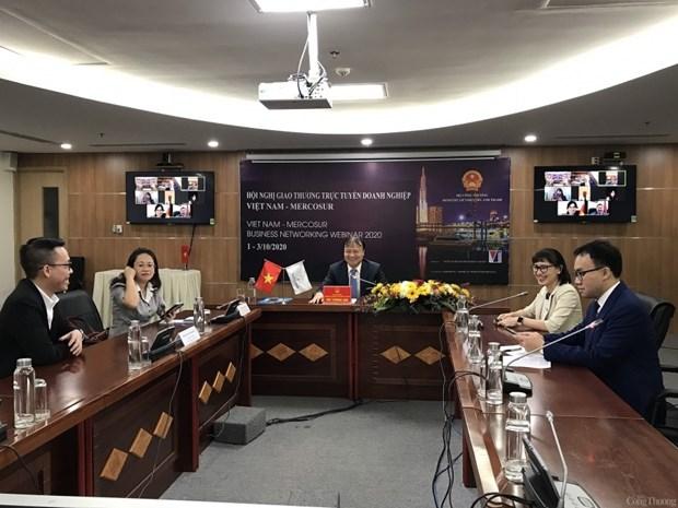Mercosur, un marche potentiel pour les exportations vietnamiennes hinh anh 1
