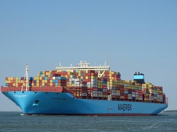 Le Vietnam va accueillir un des plus grands porte-conteneurs du monde hinh anh 1