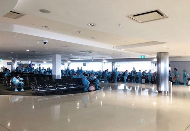 COVID-19 : plus de 350 Vietnamiens rapatries de l'Australie et de la Nouvelle-Zelande hinh anh 1
