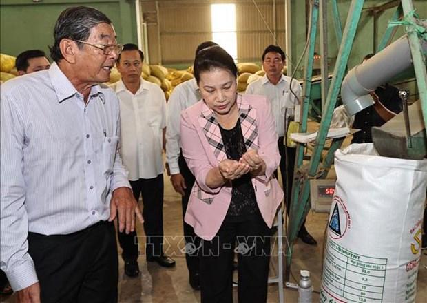 La presidente de l'AN en tournee de travail a Soc Trang hinh anh 1