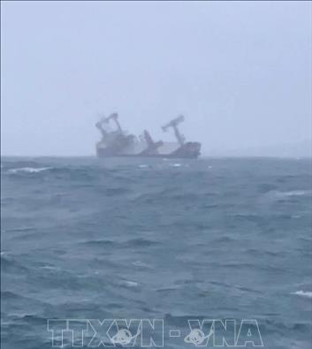 Un navire battant pavillon panameen coule a Binh Thuan, 11 personnes secourues hinh anh 1