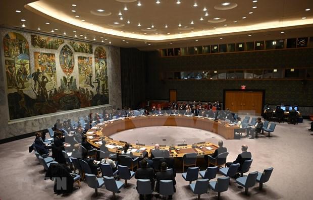 Le Vietnam reaffirme son soutien a la non-proliferation des armes nucleaires au Moyen-Orient hinh anh 1