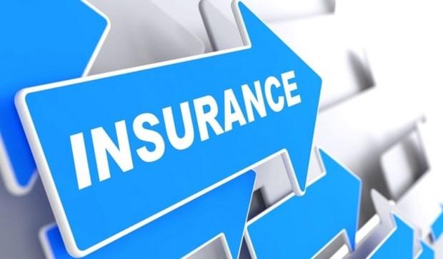 Le total des actifs du marche de l'assurance en forte augmentation hinh anh 1