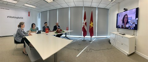 Vietnam et Danemark signent des contrats d'examens geologiques hinh anh 1