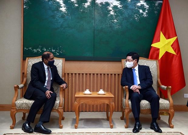 Vietnam-Singapour intensifient leur cooperation pour faire face au COVID-19 hinh anh 1