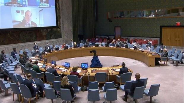 Le Vietnam appelle a la reprise des negociations sur la question palestinienne hinh anh 1