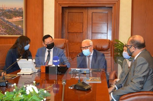 Le Vietnam et l'Egypte renforcent leur cooperation decentralisee hinh anh 1