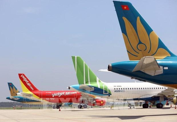 Des solutions pour «sauver» les compagnies aeriennes lourdement affectees par le COVID-19 hinh anh 1