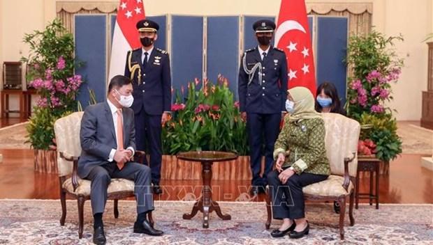 Singapour et le Vietnam renforcent leur cooperation hinh anh 1