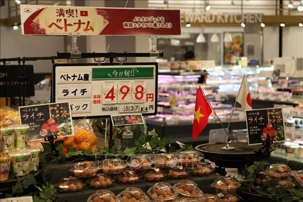 Promouvoir la cooperation economique entre la prefecture japonaise de Niigata et le Vietnam hinh anh 1