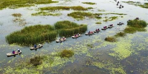 La Reserve naturelle de Van Long, une