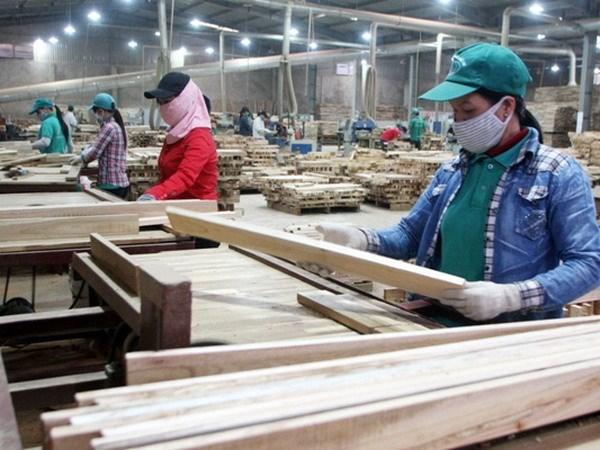 Bois et produits derives: 9 milliards de dollars d'exportation attendus cette annee hinh anh 1
