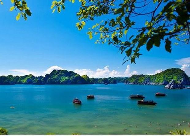 Conservation des valeurs des reserves mondiales de biosphere au Vietnam hinh anh 1