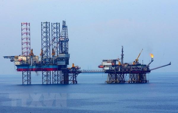 Le Groupe national gazo-petrolier du Vietnam remplit son plan annuel hinh anh 1