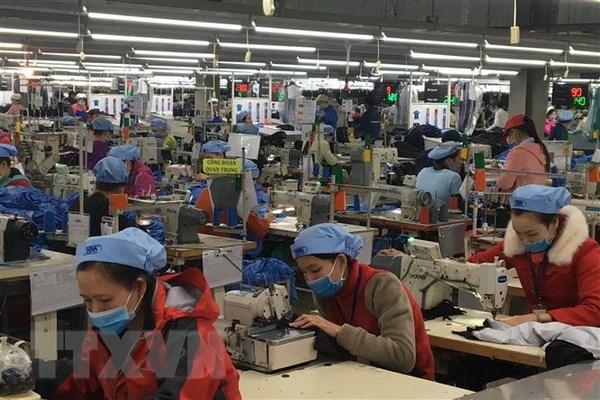 Textile et habillement : des opportunites offertes par le CPTPP hinh anh 1
