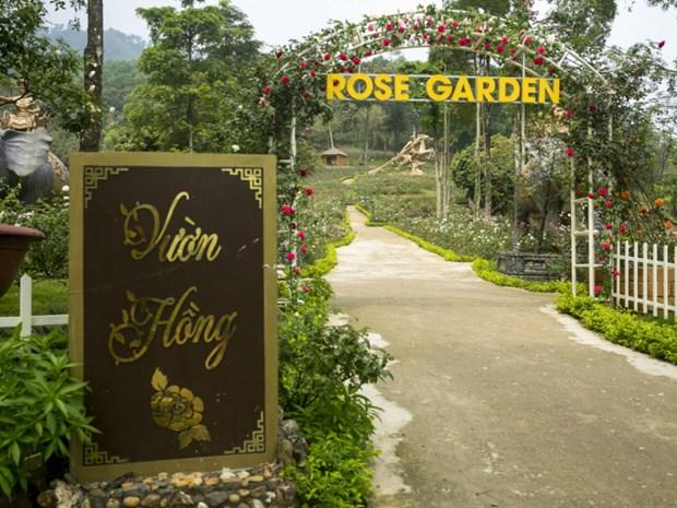 Le Paragon Hill Resort recoit trois records du Vietnam hinh anh 3