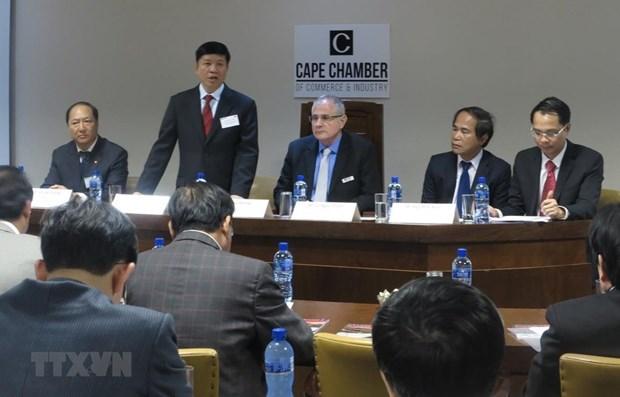 Vietnam et Afrique du Sud favorisent la cooperation entre leurs entreprises hinh anh 1