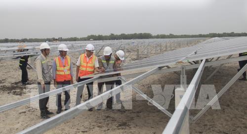La province de Quang Tri developpe les centrales solaires hinh anh 1