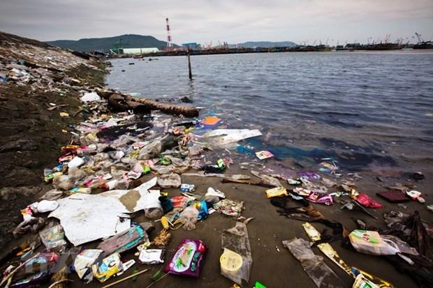 Le PM salue l'utilisation des alternatives ecologiques au lieu des sacs en plastique hinh anh 1