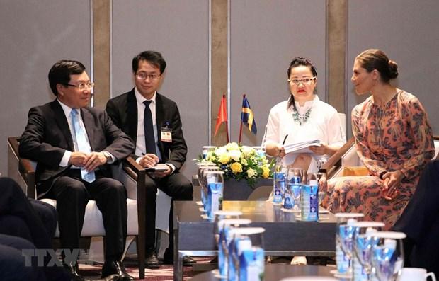 Le vice-PM et ministre des AE rencontre la princesse heritiere de Suede hinh anh 1