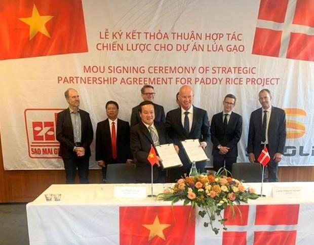 L'usine de transformation de riz la plus moderne en Asie du Sud-Est verra le jour au Vietnam hinh anh 1