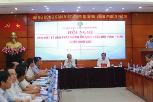 Chercher des mesures pour developper le secteur de l'elevage porcin hinh anh 1
