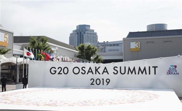 Ouverture du Sommet du G20 a Osaka au Japon hinh anh 1