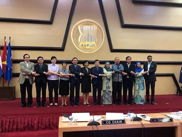 La 7e reunion du Comite de cooperation ASEAN-Nouvelle-Zelande hinh anh 1
