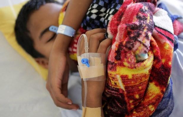 Myanmar compte 48 morts de la dengue hinh anh 1