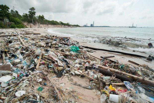 La Thailande s'efforce de reduire l'utilisation des sacs en plastique hinh anh 1