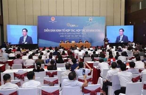 Promouvoir le role des cooperatives au sein de l'economie collective hinh anh 1
