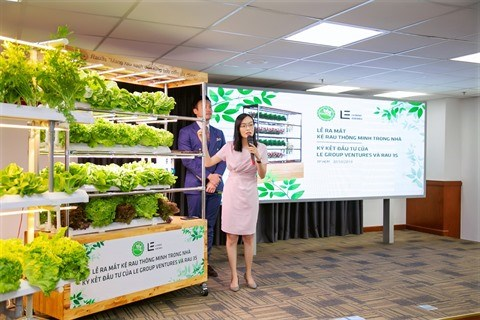 Une start-up concoit une etagere a legumes intelligente hinh anh 1