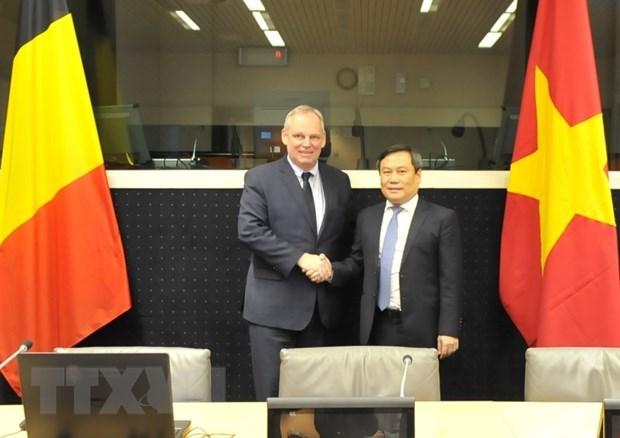 Vietnam et Belgique resserrent leur cooperation economique hinh anh 1