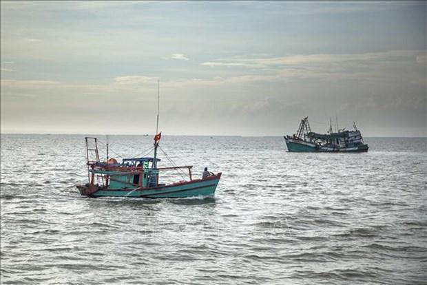 Le Vietnam respecte strictement les recommandations de la CE sur la peche INN hinh anh 1