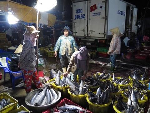 Hausse des exportations du thon vers l'Italie hinh anh 1