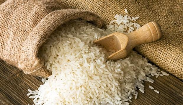 La Cote d'Ivoire: premier debouche du riz vietnamien en Afrique hinh anh 1