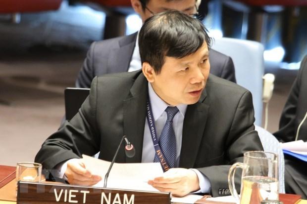 Le Vietnam soutient les efforts pour la paix du Conseil de securite de l'ONU hinh anh 1