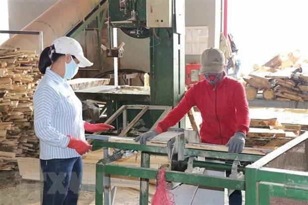 Soutenir les entreprises dans la reprise de leur production hinh anh 1