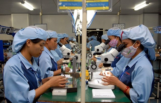 Penurie de ressources humaines au Vietnam : defis ou opportunites ? hinh anh 2