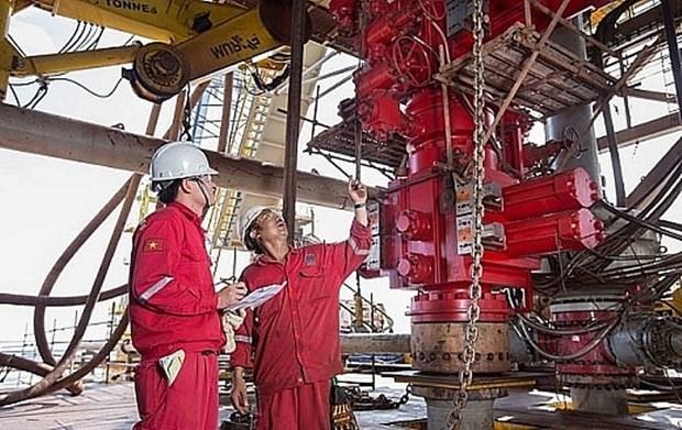 Pour aider le secteur gazo-petrolier a surmonter les difficultes hinh anh 2