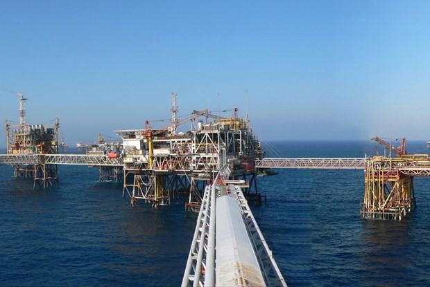 Pour aider le secteur gazo-petrolier a surmonter les difficultes hinh anh 1